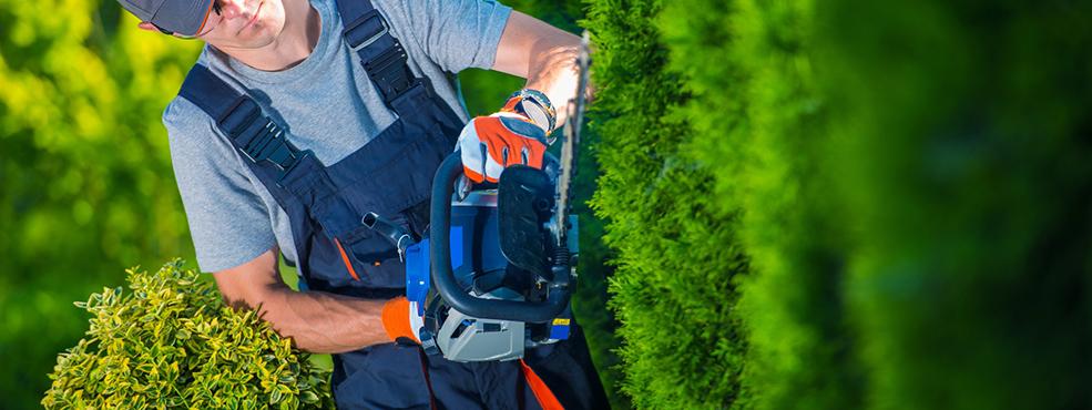 Baumarkt Markmiller - Werkers Welt » Sortiment » Gartentechnik